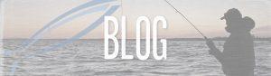 FGD Blog Banner
